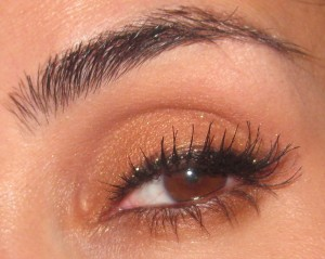 MAC Deliciously Rich Fluidline placed along the lash line on top of my black liner.