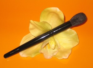 Wayne Goss Brush 02.