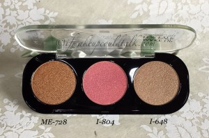 Make Up For Ever Artist Shadows ME-728, I-804 and I-648.